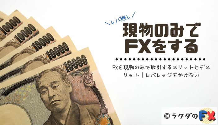 FXを現物のみで取引するメリットとデメリット|レバレッジをかけない